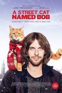 Nonton Film A Street Cat Named Bob (2016) Subtitle Indonesia Streaming Movie Download