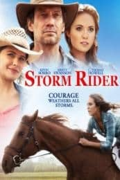 Nonton Film Storm Rider (2013) Subtitle Indonesia Streaming Movie Download