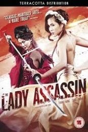 Nonton Film The Lady Assassin (2013) Subtitle Indonesia Streaming Movie Download