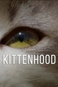 Nonton Film Kittenhood (2015) Subtitle Indonesia Streaming Movie Download