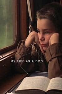 Nonton Film My Life as a Dog (1985) Subtitle Indonesia Streaming Movie Download