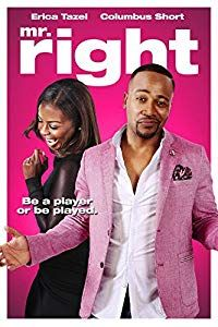 Nonton Film Mr. Right (2015) Subtitle Indonesia Streaming Movie Download