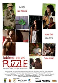 Puzzle for a Blind Man (2013)