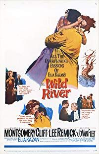 Nonton Film Wild River (1960) Subtitle Indonesia Streaming Movie Download