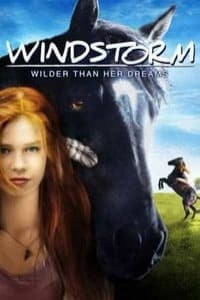 Nonton Film Windstorm (2013) Subtitle Indonesia Streaming Movie Download