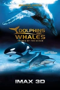 Nonton Film Dolphins and Whales 3D: Tribes of the Ocean (2008) Subtitle Indonesia Streaming Movie Download