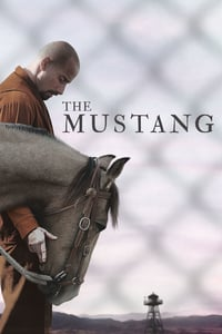 Nonton Film The Mustang (2019) Subtitle Indonesia Streaming Movie Download
