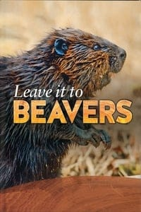 Nonton Film Leave it to Beavers (2014) Subtitle Indonesia Streaming Movie Download