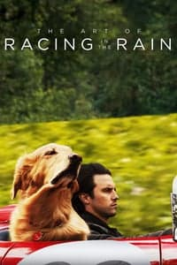 Nonton Film The Art of Racing in the Rain (2019) Subtitle Indonesia Streaming Movie Download