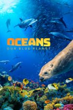 Nonton Film Oceans: Our Blue Planet (2012) Subtitle Indonesia Streaming Movie Download